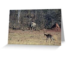 The Rhino steps clear of the brush into full view. Greeting Card