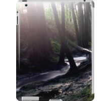 Mystical iPad Case/Skin