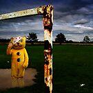 It's all bollocks! by Dave Hiskey