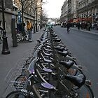 Not quite nine million bicycles in Paris but there's a lot by nedals71