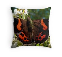 Natures Markings - Red Admiral Butterfly - NZ Throw Pillow