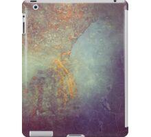 P17 Copper Street iPad Case/Skin