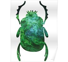 Moss On The Temple of the Stone People | Egyptian Scarab Beetles  Poster
