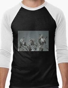 Milkweed HDR T-Shirt