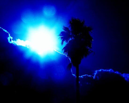 Blue by Andi Hardwick