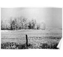 Frosted Fields Poster