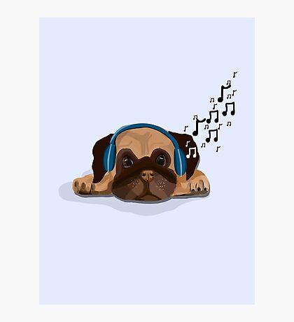 Musical Pug Photographic Print