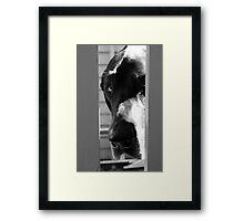 The Dog House Framed Print