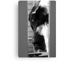 The Dog House Canvas Print