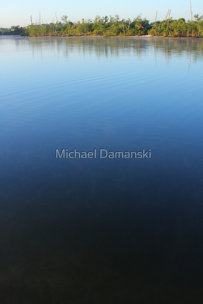 In The Distance by Michael Damanski