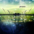 peace by Scott Mitchell