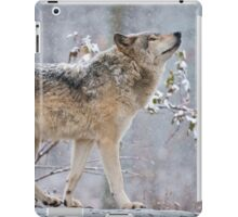 Something In The Air iPad Case/Skin