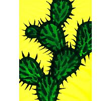 Chinese brush painting - Opuntia cactus. Photographic Print