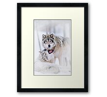 Going To Eat You Framed Print