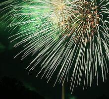 2007 Independence Day Fireworks by Tim Yuan