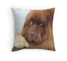 My Teddy is sleeping! - Newfoundland - NZ Throw Pillow