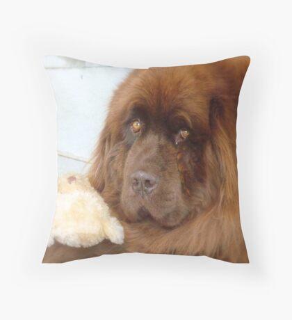 My Teddy is sleeping! - Newfoundland - NZ Throw Pillow