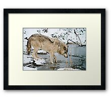 OHHH, That's Cold Framed Print
