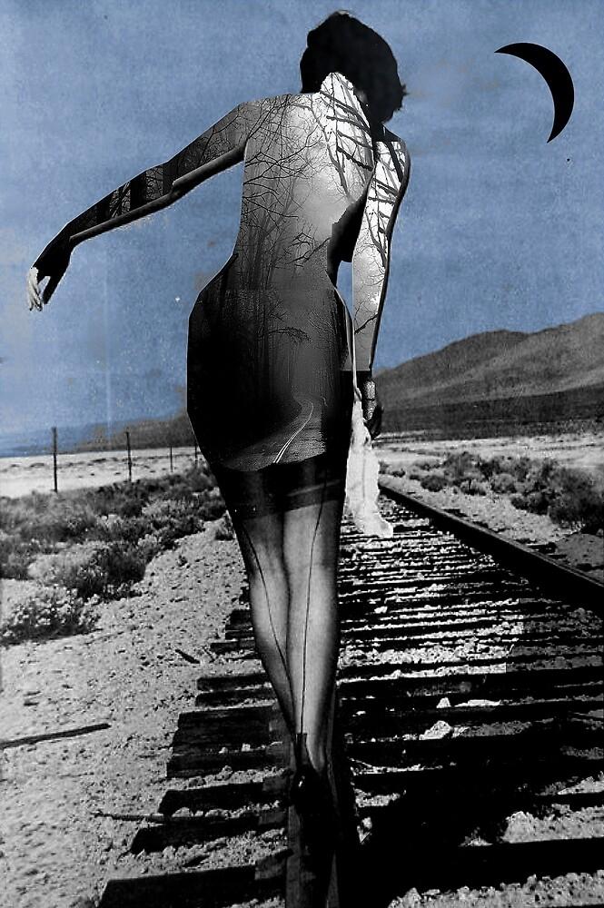 destiny's road by Loui  Jover