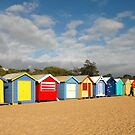 Beautiful Brighton Bathing Boxes by Stephanie Johnson