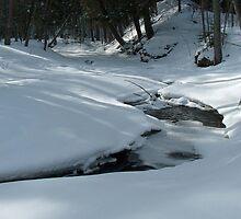 snow dayz by gazzf1