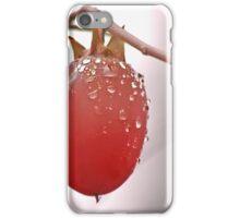The Last Persimmon iPhone Case/Skin
