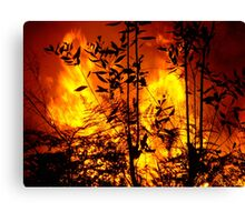 Bush Fire.... Canvas Print