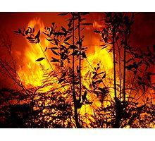 Bush Fire.... Photographic Print
