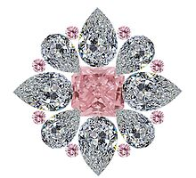 The Tudor Rose Pink Diamond by eldonshorey