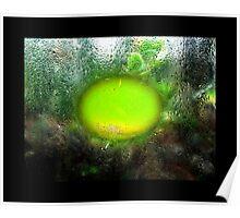 Through Greenhouse window Poster