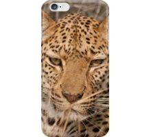 Leopard in your face iPhone Case/Skin