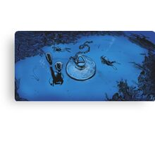 Undersea Discovery Canvas Print