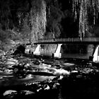 The River BW by DavidsArt
