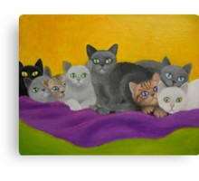 KITTENS ON A BLANKET Canvas Print
