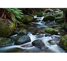 Torongo River Photographic Print
