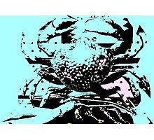 Crab Cake Photographic Print