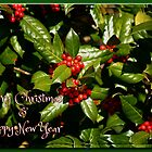 Merry Christmas + Happy New Year Holly by WalnutHill