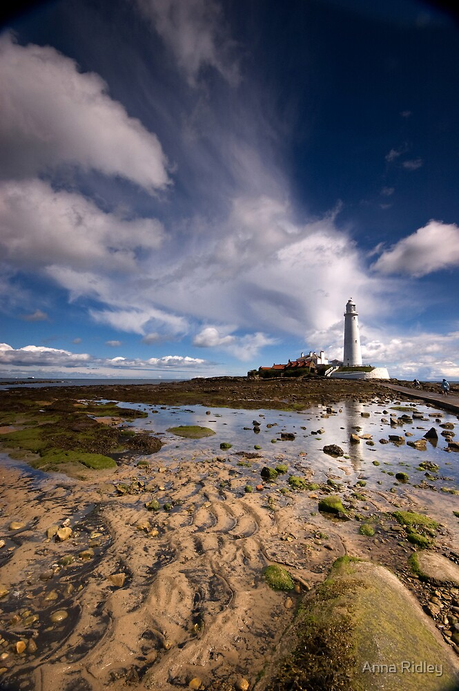 To the Lighthouse by Anna Ridley