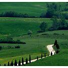 Tuscan biker by Ranald