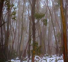 Snow Gums by DavidsArt