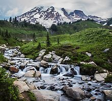 Mount Rainier View from Myrtle Falls by Nicole Petegorsky