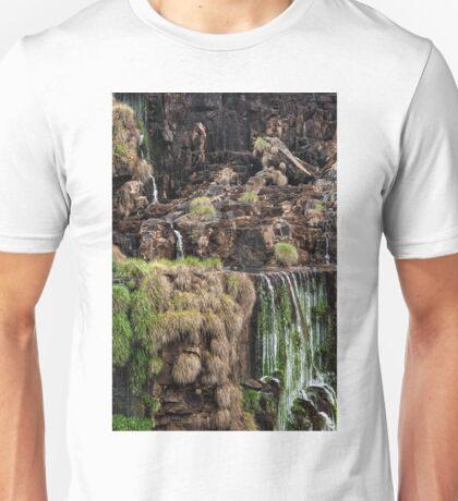 Iguazu Falls - a small section Unisex T-Shirt