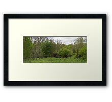 HDR Composite - Abandoned Farmstead Growing Up Framed Print