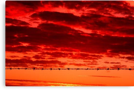 Rural Sunrise by Neil