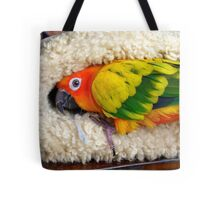 It's Snuggle Buggle Time - Sun Conure - NZ Tote Bag