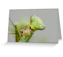 Hungry Mantis Greeting Card
