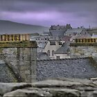 The Rooftops of Lerwick by Larry Lingard-Davis