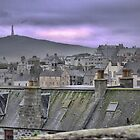 More Rooftops Over Lerwick by Larry Lingard-Davis