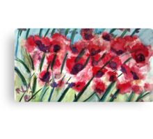 Poppies In Bloom Canvas Print