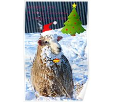 Hey! -  I Wanna Be Santa This Year! - Sheep - NZ Poster